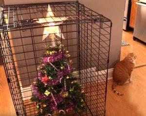 Karácsonyfa biztonságos felállítása macska cica háziállat mellett ellen