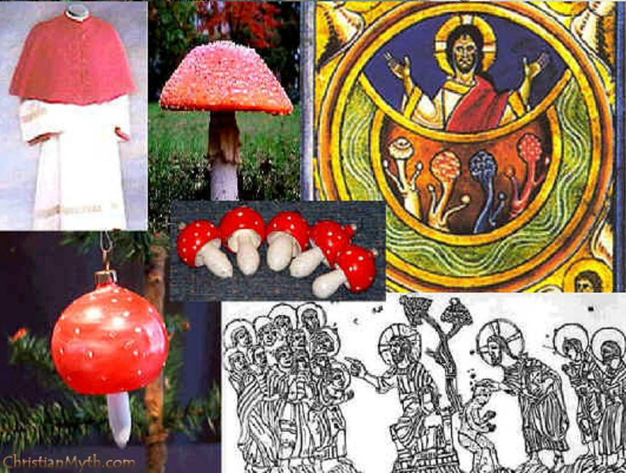 Kereszténység gomba hallucinogén pszichedelikus gombák a keresztenységben