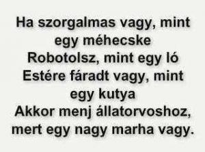 Robotzombi