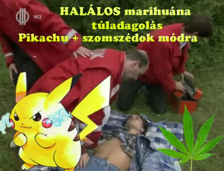 Halálos marihuána túladagolás pikachu szomszédok