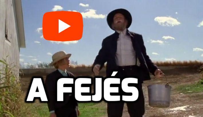 tehén fejés bika videó