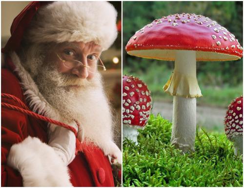 Mit ünneplünk Karácsonykor?
