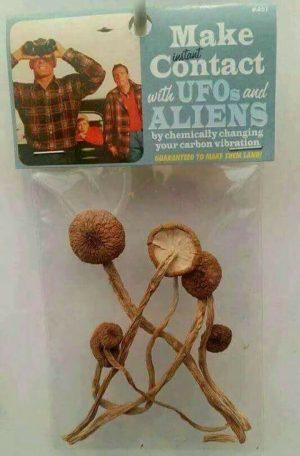 UFO kapcsolatfelvétel hallucinogén gombával ;)