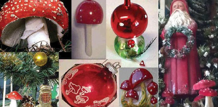 Karácsony légyölő galóca gomba mikulás télapó eredete