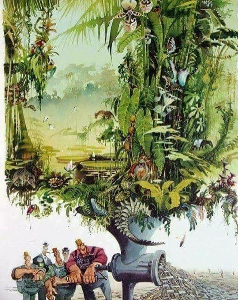 A Természet Kiírtása Pénzért