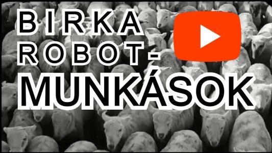 Vicces gyári munkások Birkák (vicces videó)