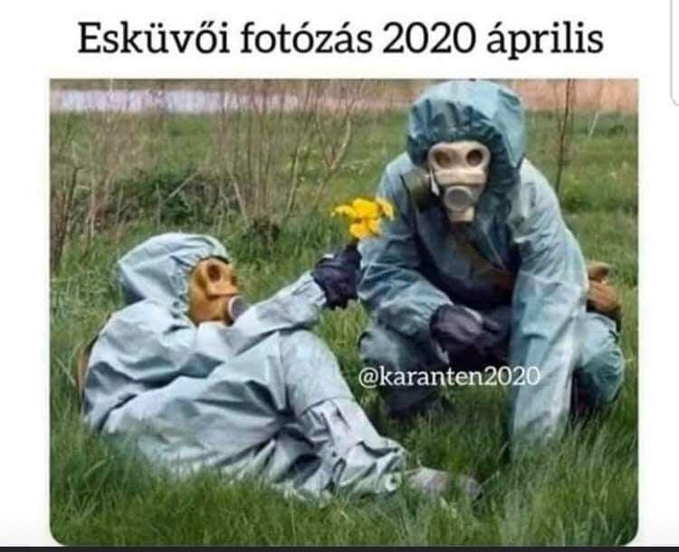 vicces járvány képek